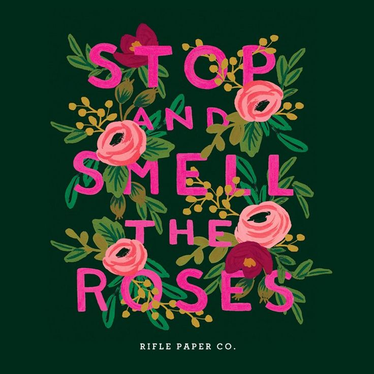 Take Time To Smell The Roses Quote: Pin By Action Medical Research On Sayings
