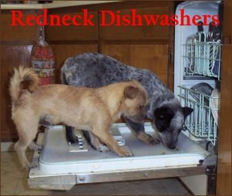 Redneck Dishwashers...Slogan: Come on down to Economy Eds and help conserve water and save a strays life when you purchase this dishwasher...Worm pills to the 1st customer....)