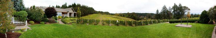 BeckonRidge Vineyard is a beautiful place for a wedding