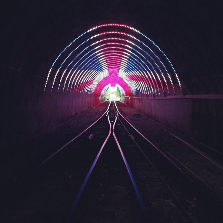 "182 Likes, 3 Comments - Wellington City Council (@wgtncc) on Instagram: ""The lights in the @wellingtoncablecar tunnel. Kia Kaha #manchester ❤️💙"""