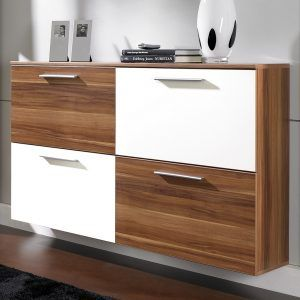 Modern Shoe Storage Cabinet Furniture