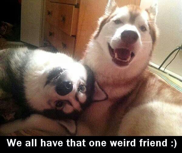 Weird friend - don't lie we all got one.