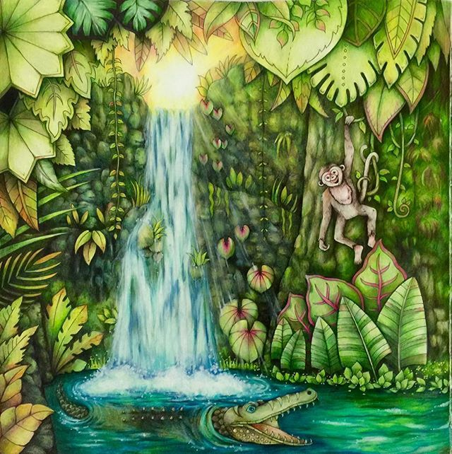 407 Best Magical Jungle Johanna Basford Images On