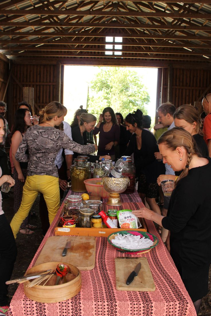 Lunch at Sandor Katz fermentation workshop at the farm summer 2016