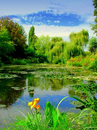 Flower Garden, Monet's home in Giverny, France