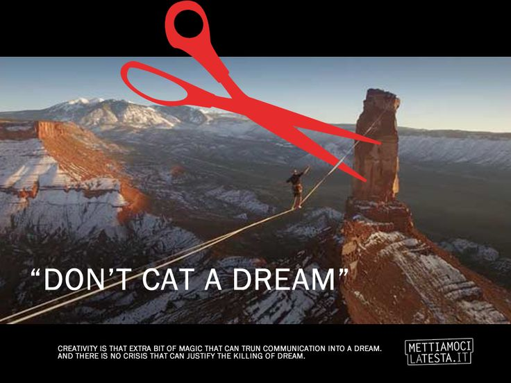 (Dont Cat A Dream) EPI 3