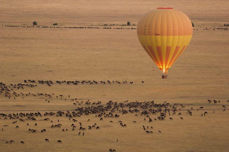 Beginnen Sie den Tag mit einem Ballonflug und dem Serengeti-Nationalpark