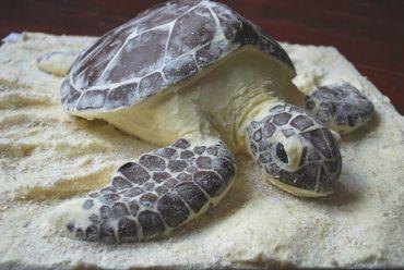 sea turtle cake ~ madeira vanilla sponge;vanilla butter icing; dark chocolate detail ~ This cake won Gold at the Cake show 2009
