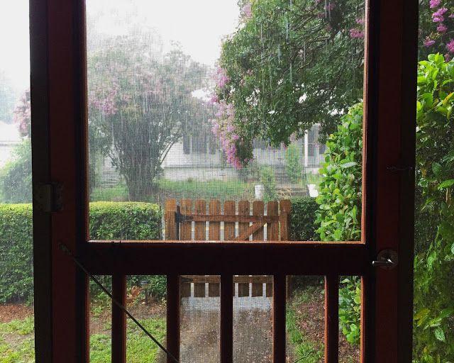 Essay rainy season