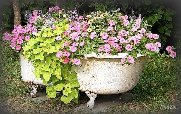 vintage bathtub planter ideas | ... Garden in a Bathtub in garden art with garden flowers bathtub bath