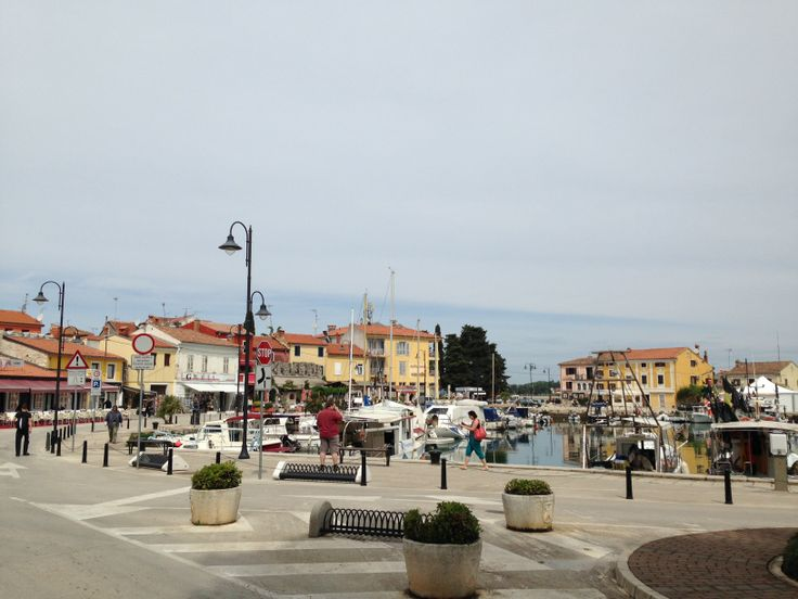 Istria, Cittanova