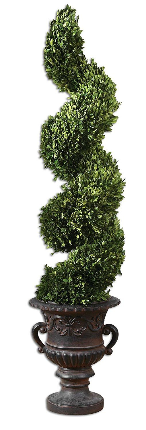 Uttermost Spiral Topiary Preserved Boxwood with Preserved While Freshly Picked * Check out this great product.