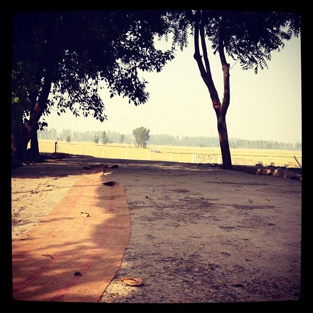 #love, #instagood, #cute, #photooftheday, #instamood, #iphonesia, #beautiful, #happy, #india, #niceview, #Indian, #travel, #traveller, #nature, #ashram - @uexpert- #webstagram