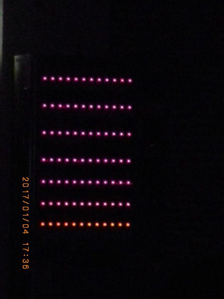 Various light. (Vending machine)  #my photo #night light #night view #light