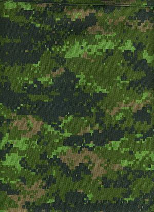 Canadian Disruptive Pattern (CADPAT) is the computer-generated digital camouflage pattern currently used by the Canadian Forces. CADPAT is designed to reduce the likelihood of detection by night vision devices.
