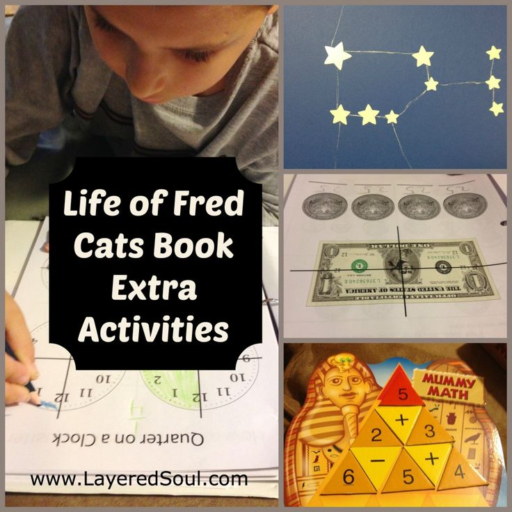 Life of Fred Cats, Extra Activities - Layered Soul Homeschool