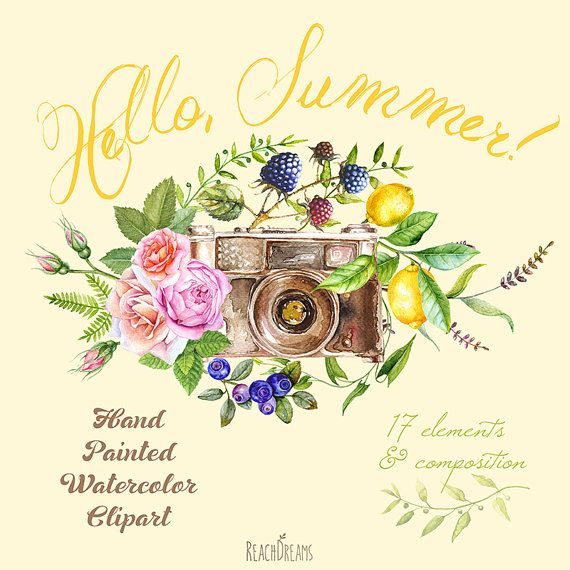 Watercolor Clipart Retro Photo Camera with Floral elements, Summer Berries and Fruits. Wedding invite, greeting card, diy, transparent png