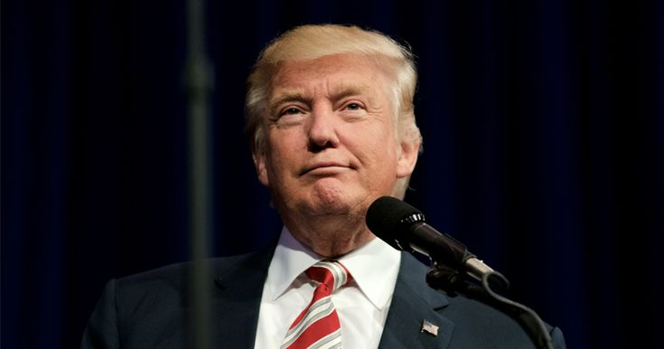 VIDEO DONALD TRUMP THANKS INFOWARRIORS FOR THE WIN President Elect Trump reaches out to thank the Infowars audience