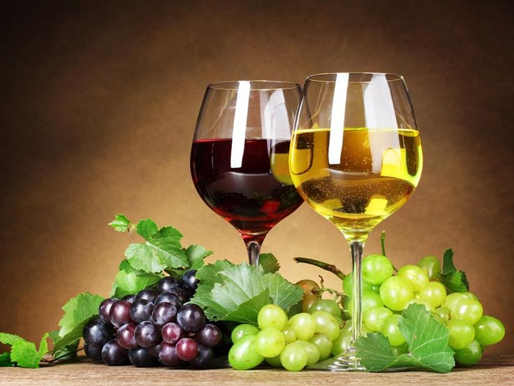 Il vino biologico in Veneto