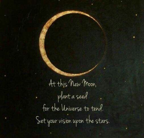 New Moon Quote | 2019 Vision | Moon magic, Moon plant, Moon