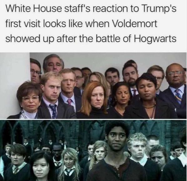 Harry Potter Funny Memes Harry Potter Quotes Funny Harry Potter Memes Hilarious Harry Potter Jokes