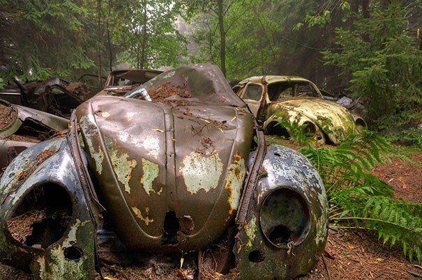 автомото – 863 фотографии