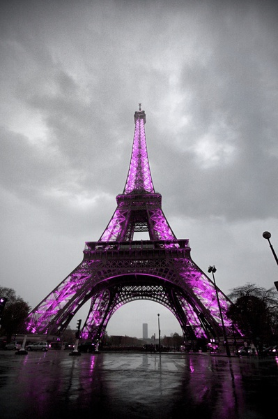 A touch of pink eiffel tower