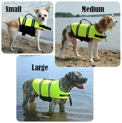 Dog Life Vest Jacket    I take my dog Daisy on the boat all summer so this would be great!!