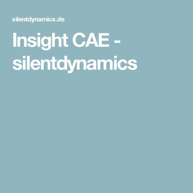 Insight CAE - silentdynamics