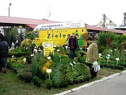 EGZOLAND - в стране зелени... балконные цветы, декоративные деревья и кустарники, создание садов, парков