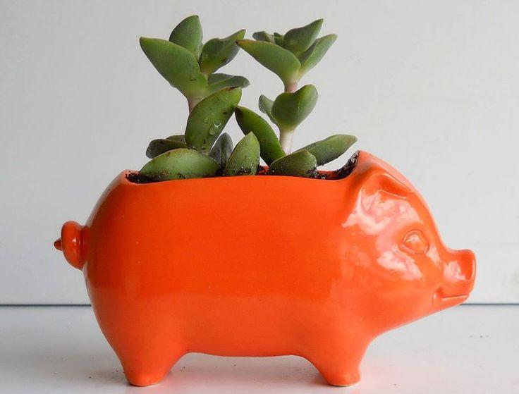 Piglet Planter: Minis Pigs, Piggy Banks, Ceramics 60S, 60S Minis, Vintage Design, Pigs Planters, Minis Desks, Desks Pigs, Ceramics Pigs