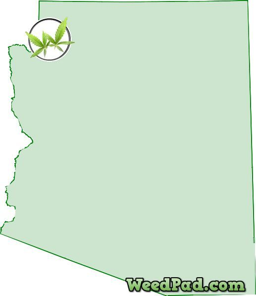 how to get a medical marijuana license in california