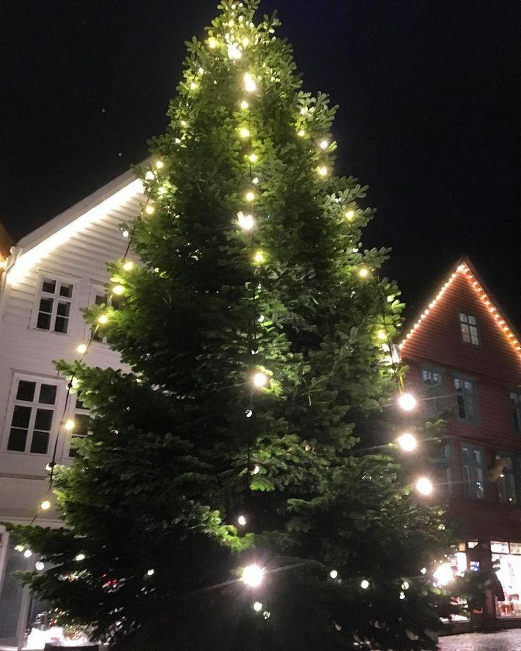 Best 25+ Christmas tree shop coupon ideas on Pinterest   Christmas ...