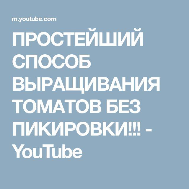 ПРОСТЕЙШИЙ СПОСОБ ВЫРАЩИВАНИЯ ТОМАТОВ БЕЗ ПИКИРОВКИ!!! - YouTube