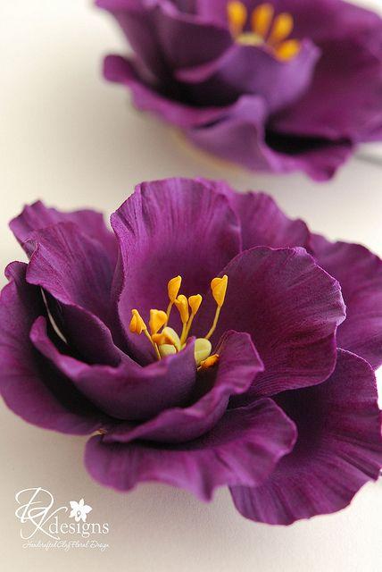 jessie-bm   Flickr - Photo Sharing!