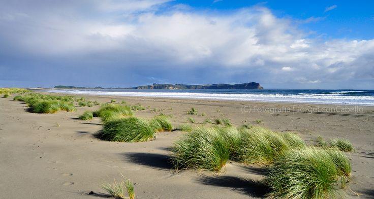 https://flic.kr/p/9Nsm2g | Panorama Playa Pangal - Patagonia Chilena Norte | Maullin se ubica a 57 kilómetros al este de Puerto Montt, en la Provincia de Llanquihue, Region de los Lagos. Este pequeño poblado situado a orillas del Río homónimo, posee atractivos naturales como la playa Pangal, Puerto Godoy, Quillagua y los Humedales del Rio Maullin.  Pangal es la playa principal y queda al suroeste de Maullin entre las desembocaduras de los ríos San Pedro Amortajado y Río Maullin. De…