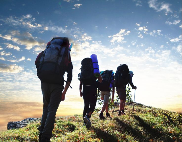 We provide an industry analysis on the outdoor clothing market. View our SEO sector report on The Outdoor Clothing Industry.