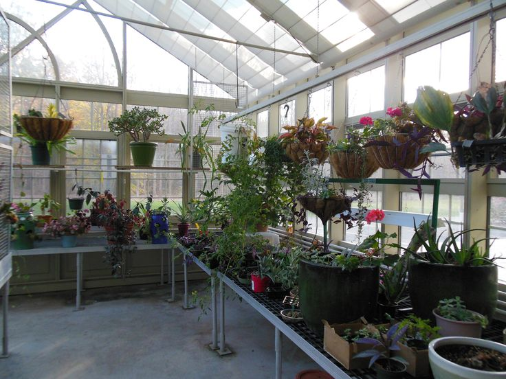 33 best year round greenhouse images on pinterest for Greenhouse designs for residential use
