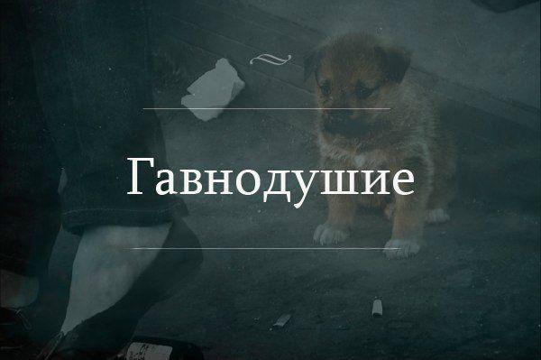 Новая эпидемия Рунета