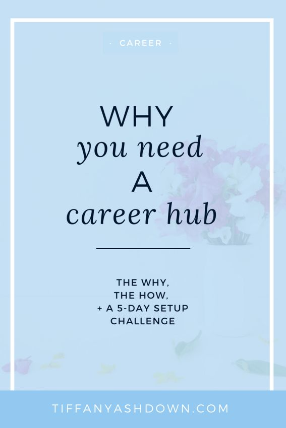 Career hub? I hear you say... A career hub is a name, put to the conglomerate of all of your career documents, tracking and resources.