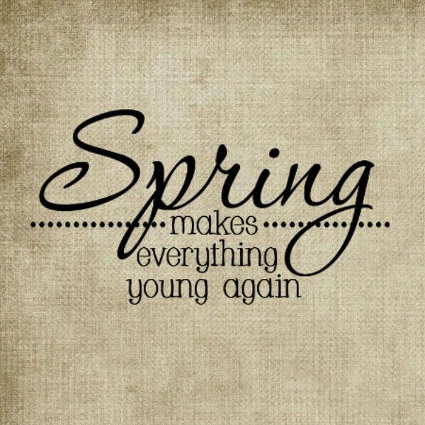 17 Best Springtime Quotes On Pinterest