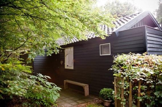 Slapen in het bos [Apeldoorn - Nederland]