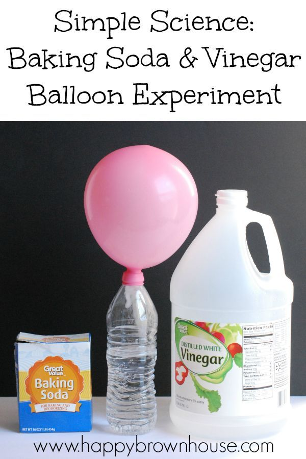 Simple Science Baking Soda Vinegar Balloon Experiment Balloon Science Experiments Easy Science Fair Projects Science Experiments Kids Preschool