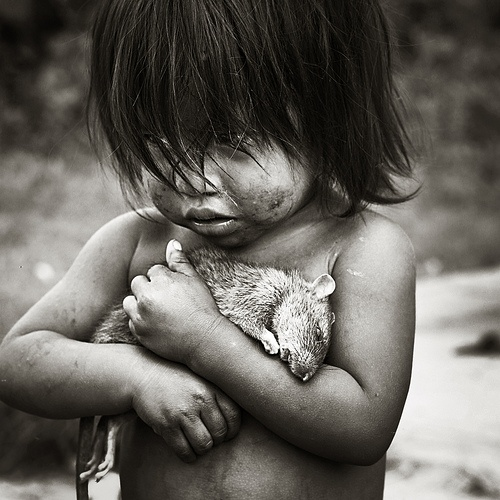 Found this image on Flickr through the CARF page, Children At Risk Foundation. It made an impact on me, maybe because of the power of love over death, of they way children struggle, just not quite sure. I live a life I don't deserve when I think of how some children live. This rat is dead, but the child loves it. Oh....the humanity of it.