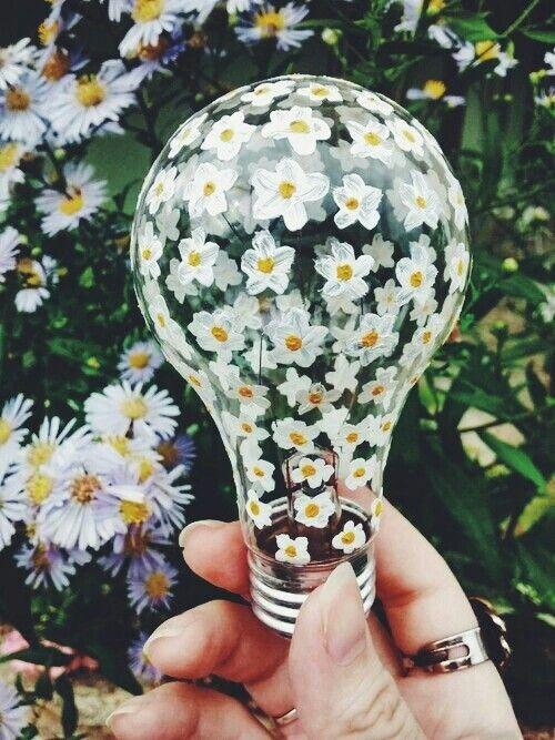 Ampoule fleuri