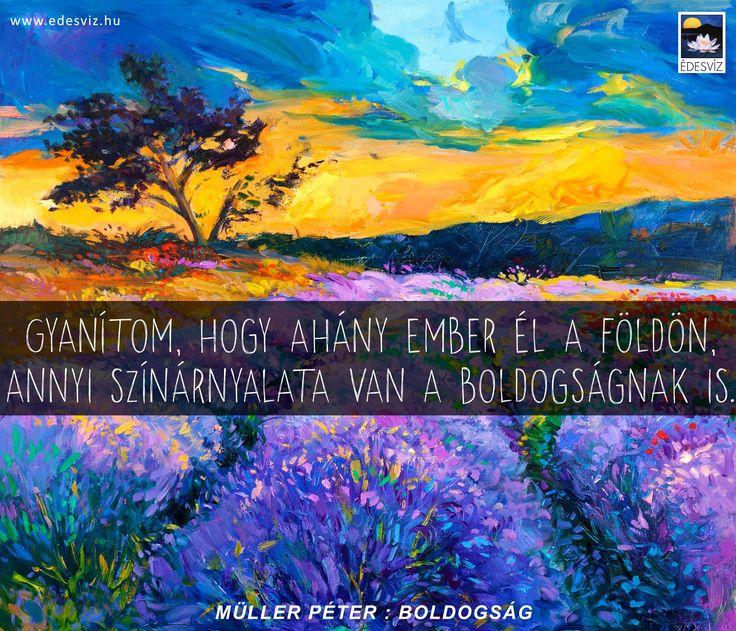 Müller Péter idézet a boldogságról. A kép forrása: Édesvíz Kiadó