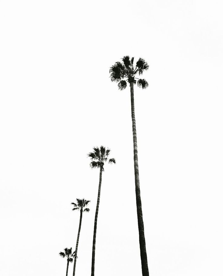 Palms align.