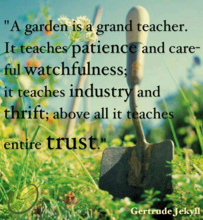 Quotes About Love Quote Garden : Quotes About Gardening And Teaching. QuotesGram