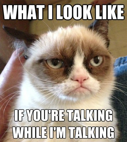 What I look like if you're talking while i'm talking.  Grumpy cat
