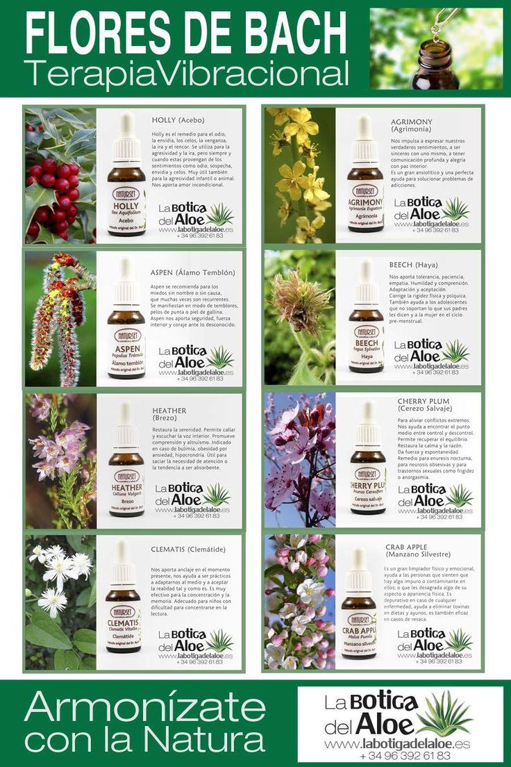Flores de Bach